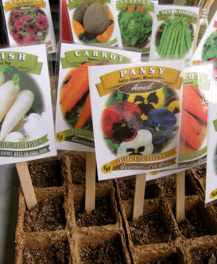 If you use all the seeds in your packets then just throw them on a popsicle stick.