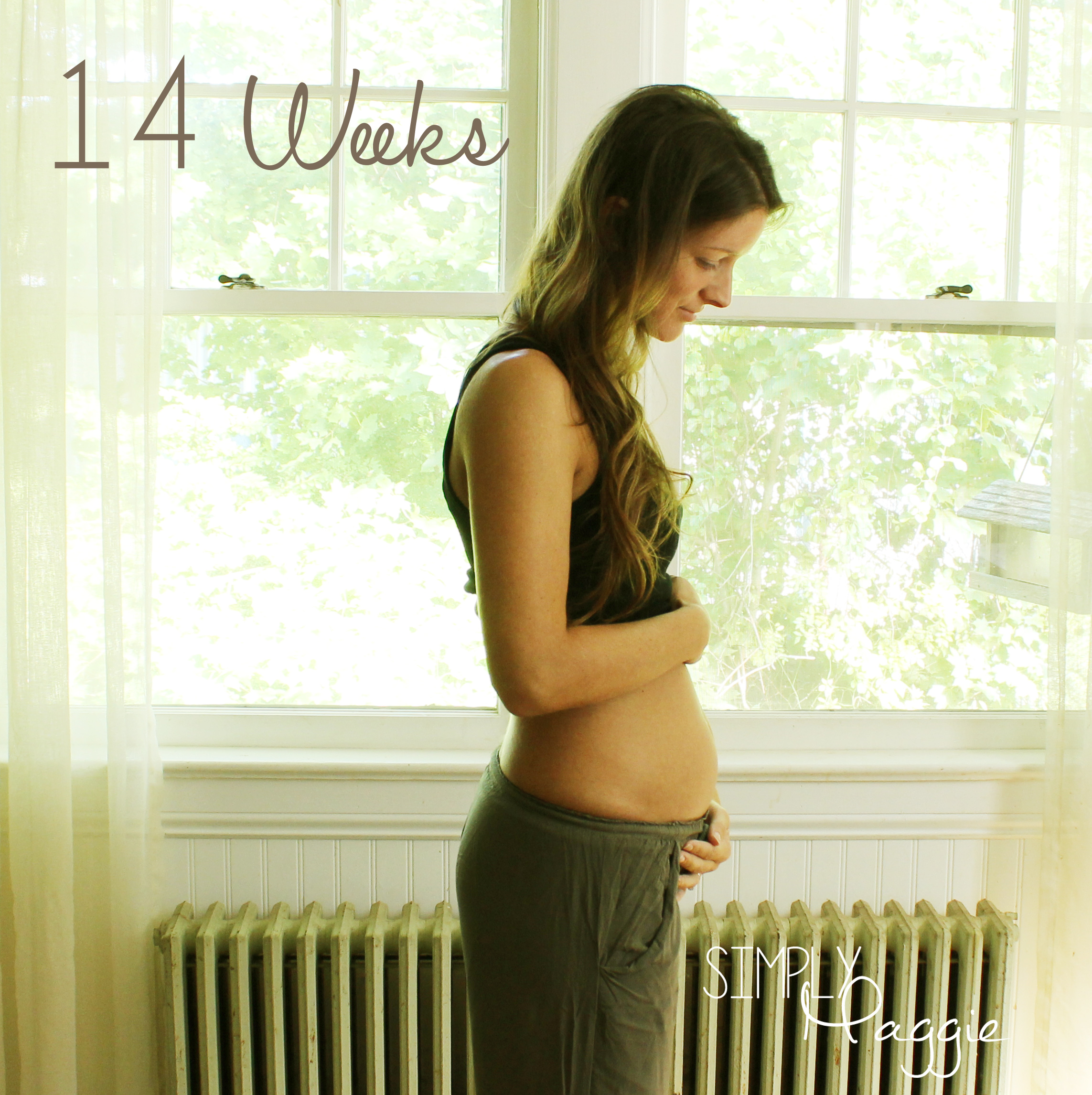 My First Pregnancy Journey Weeks 12 14 Simplymaggie Com